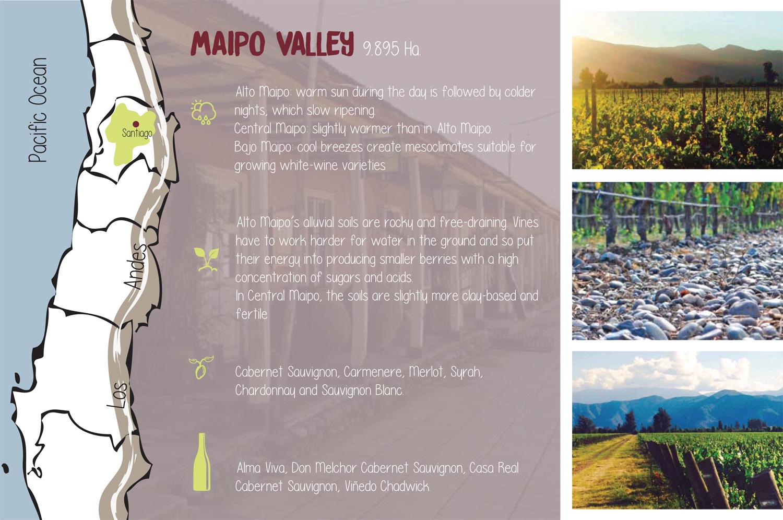 vallesvinos3-4.jpg